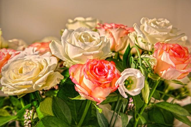 ורדים למראה רומנטי